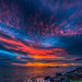 Florida Colors by DonMiller_ToGo
