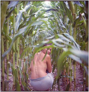 ".the cornstalk told me, ""better run while the earth holds this heat"" 