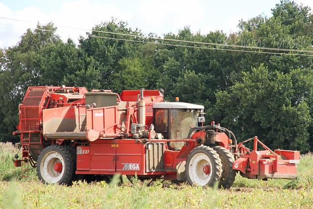 Dewulf Self Propelled Potato Harvester