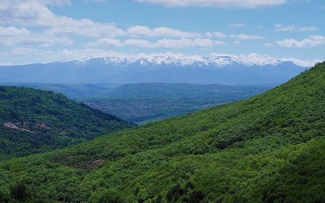 96 Sierra verde