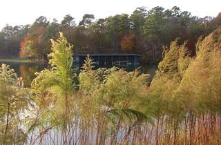 Cliffs of the Neuse State Park (5)