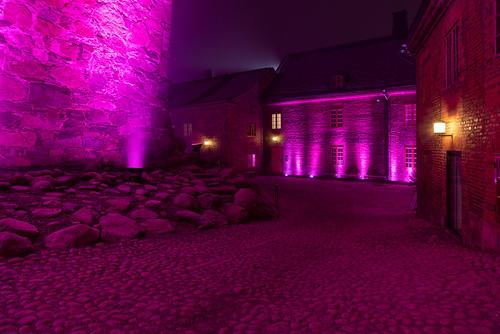 Hame Castle 14.12.2018