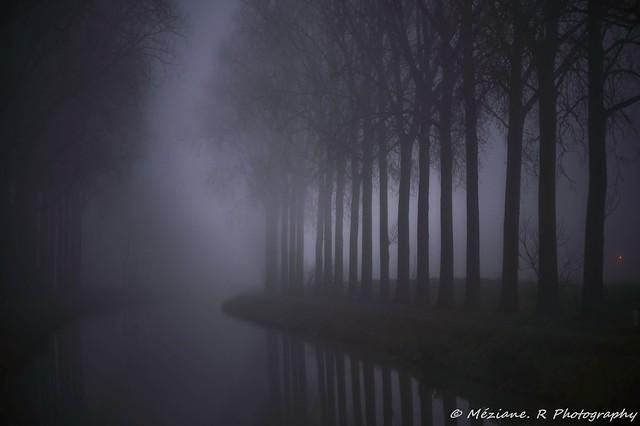 St Leger ( Belgique )