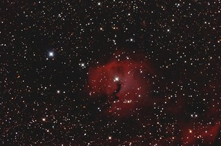 IC2177 Seagull Nebula | by BlackWikkett