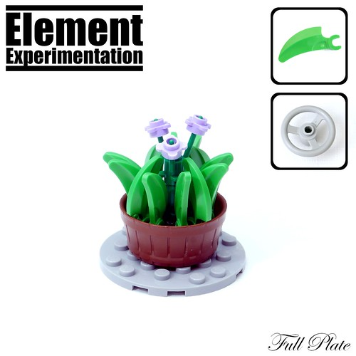 Element Experimentation: Flower in a Barrel | by Emil Lidé