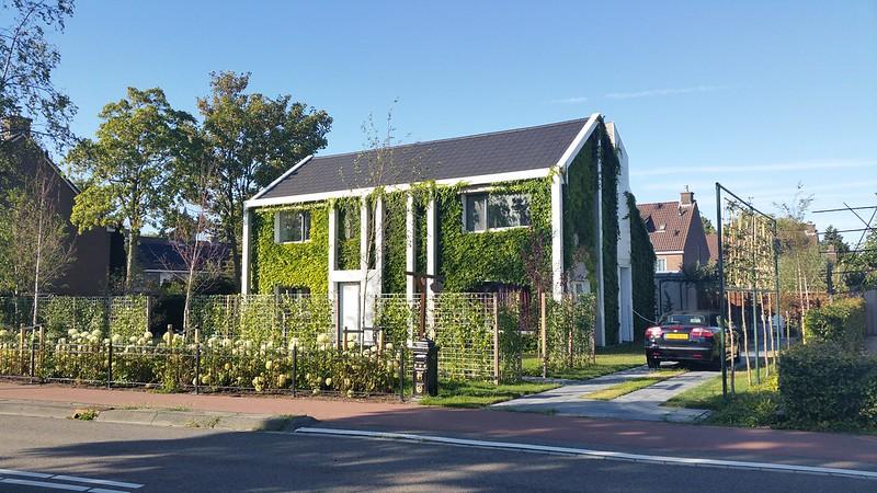 Huis met groene gevel, Nootdorp