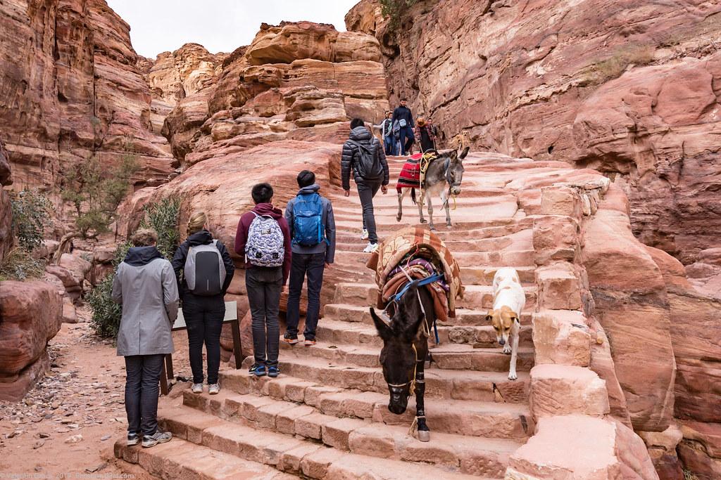 Petra_Iordania 28 dec 18_37_traseu spre manastire med