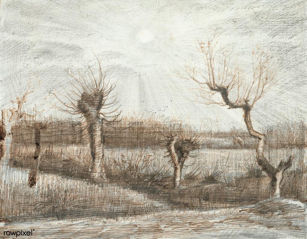 Tetards (Pollards) (1884) by Vincent Van Gogh  Original fr