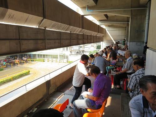 ロイヤルバンコクスポーツクラブ2階の装鞍所を見下ろすベンチ