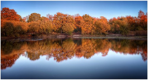 silicapond pond trees bushes reeds bridge colour colourful autumn autumnal sunlit sunlight sunset sky water reflections calm calmness peaceful outdoors outside image imageof imagecapture nature naturephotography photoof photography scunthorpe lincolnshire northlincs northlincolnshire nlincs