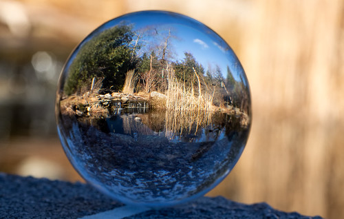 First Lensball image | by Rob & Amy Lavoie