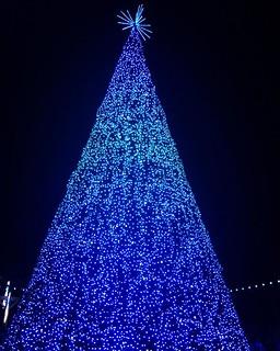 #christmastree #dollywood #bryantgannclan2019 | by rustyb78