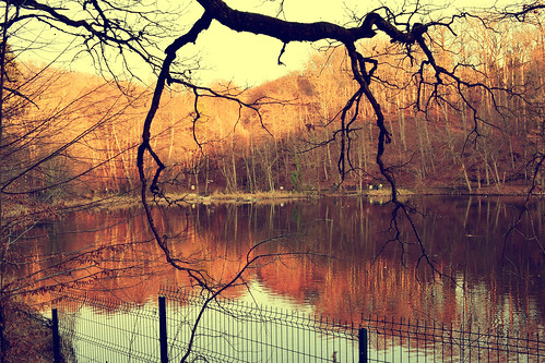 sovata erdely transilvania romania medve autumn