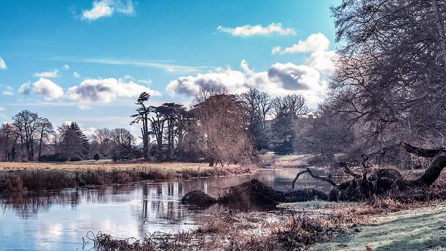 A Winter Riverside Walk
