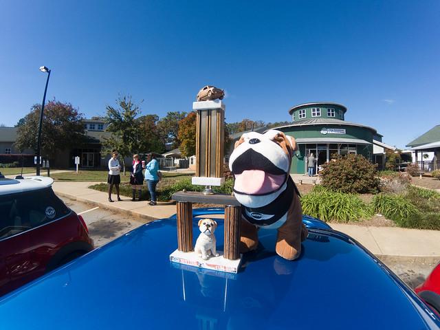 Upstate Minis Bulldog Fun Run 2018-005