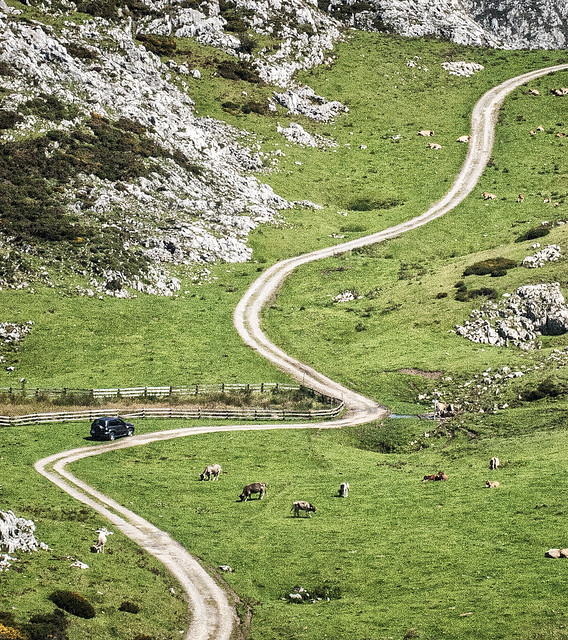 Mountain road above Lake Enol  in Picos de Europa, Asturias, Spain