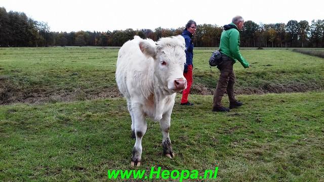2018-11-07               Baarn SOP           25 Km  (61)