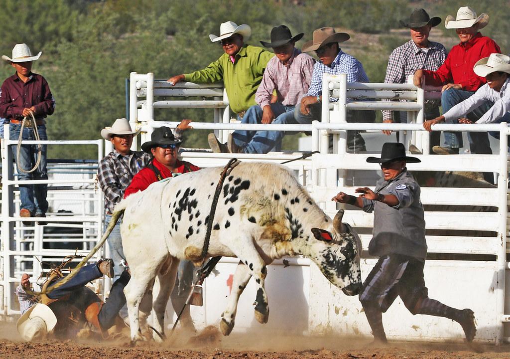 Rodeo Fort Mcdowell Rodeo Arena Zbubakaz Flickr