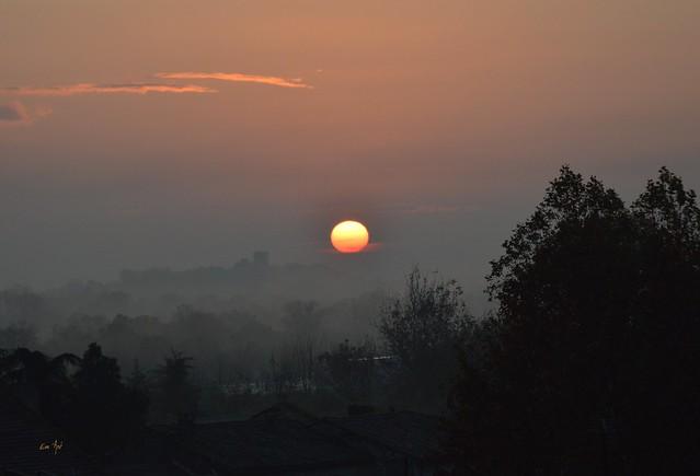Matinale - Morning Sun