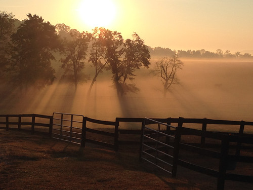 rural landscape blueridge nature outdoors countryside nikond5100 charlottesville albemarle virginia