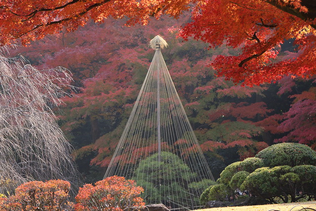Autumn Landscape Garden