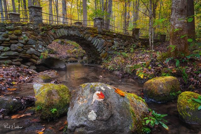 Troll Bridge - Great Smoky Mountain National Park