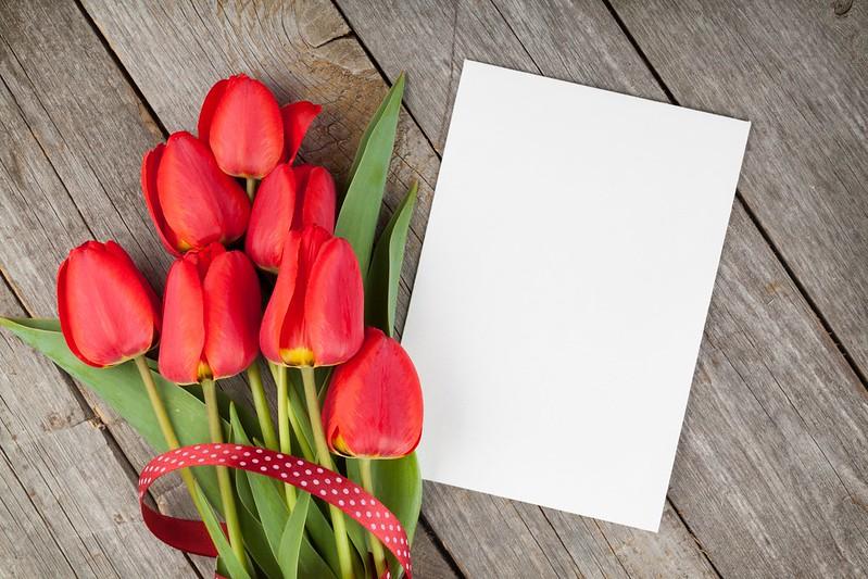 Обои тюльпаны, red, wood, flowers, tulips, красные тюльпаны картинки на рабочий стол, раздел цветы - скачать