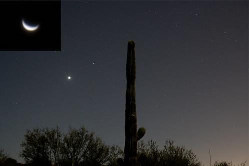 Venus in the predawn Tucson AZ sky