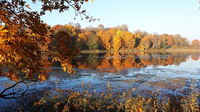 Autumn Fairytale 24