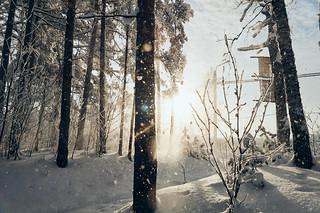 28012019_40 | by ilya.srt