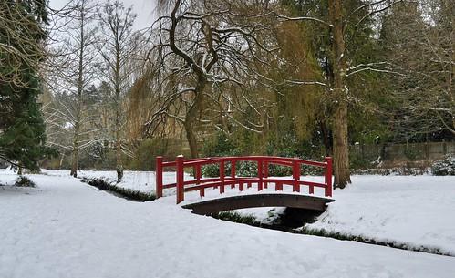 snow dorset nikon poole coypond