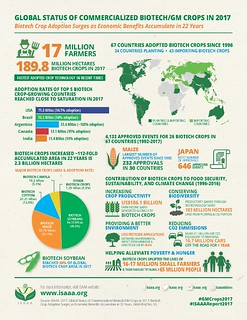Brief 53 Infographics | by isaaa.kc