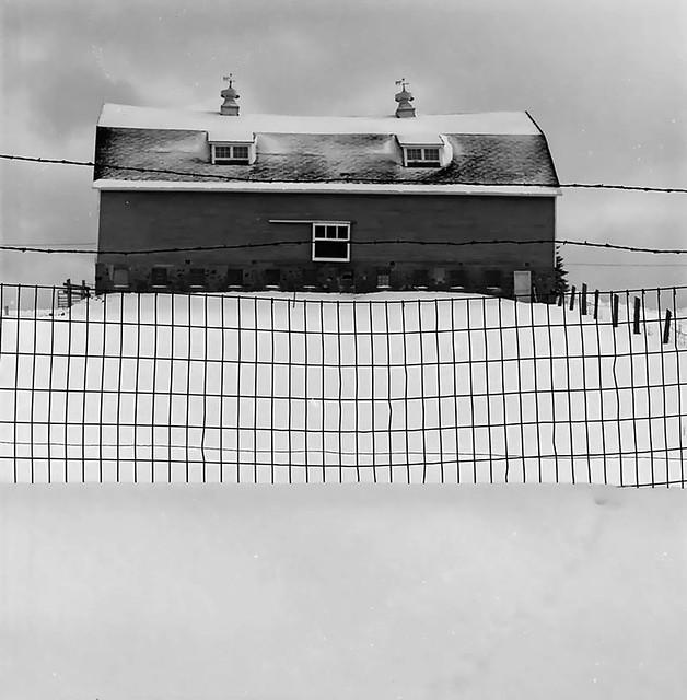 Fence and Barn in Snow