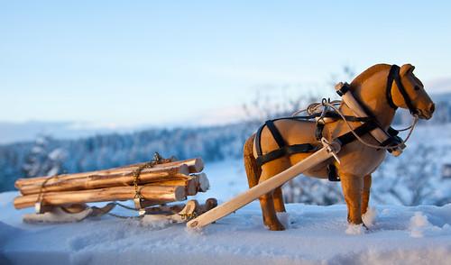 Horselogging | by estenvik