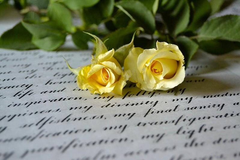 Обои письмо, макро, стиль, розы, дуэт, жёлтые розы картинки на рабочий стол, раздел цветы - скачать