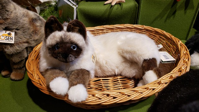 Cute birman cat! I couldn't decide whether to buy this or not