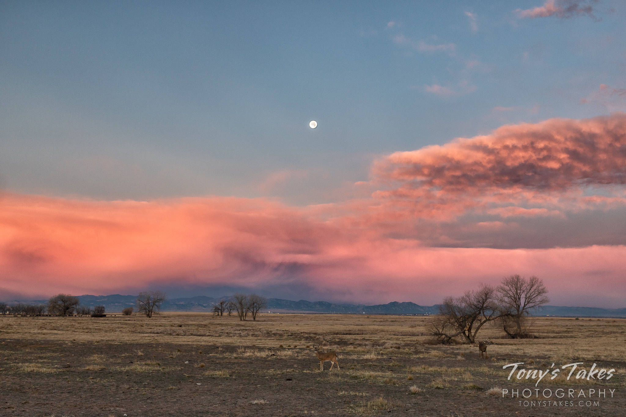 The sunrise in the east colors the clouds to the west over the Colorado Front Range. (© Tony's Takes)
