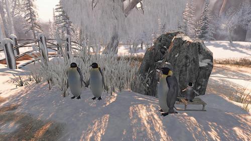Penguins...