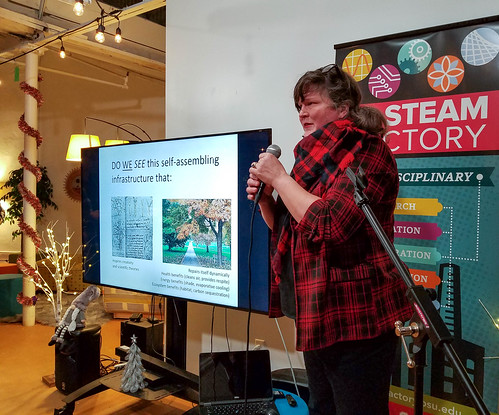 ARTrees presentation at the STEAM Factory | by Amy M. Youngs
