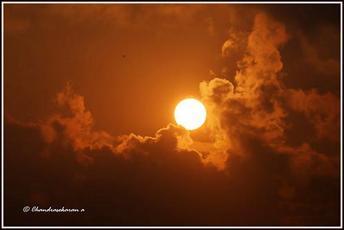 sunrise chennai nature india sholinganallur canoneos6dmarkii tamronsp150600mmg2