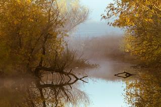Reflected Stillness_4515