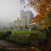 Hatley Mist - Vancouver Island, Canada by Thomas J Dawson