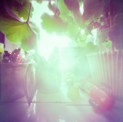 the light 3000 | by jojonas~