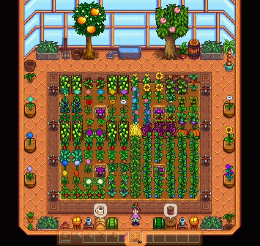 Stardew Valley Hilltop2 Farm Greenhouse Interior I Plan Flickr