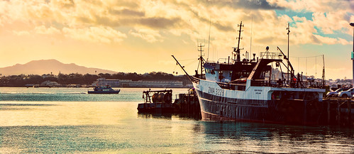newzealand harbour sea mar sunset port boat barco nuevazelanda