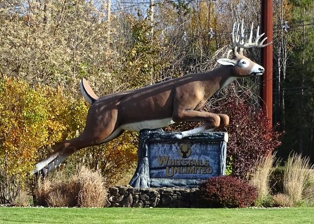 WI, Sturgeon Bay-Whitetails Unlimited Deer Mascot