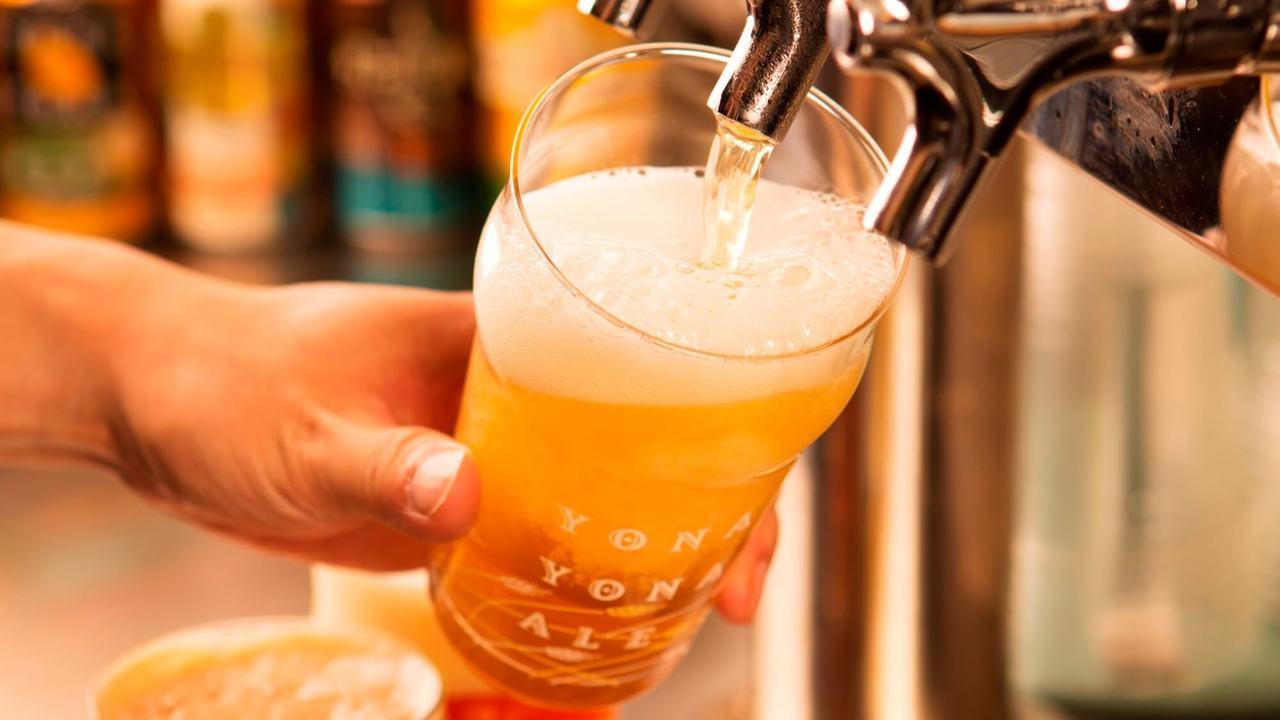 Роскачество назвало пиво одним из самых безопасных напитков