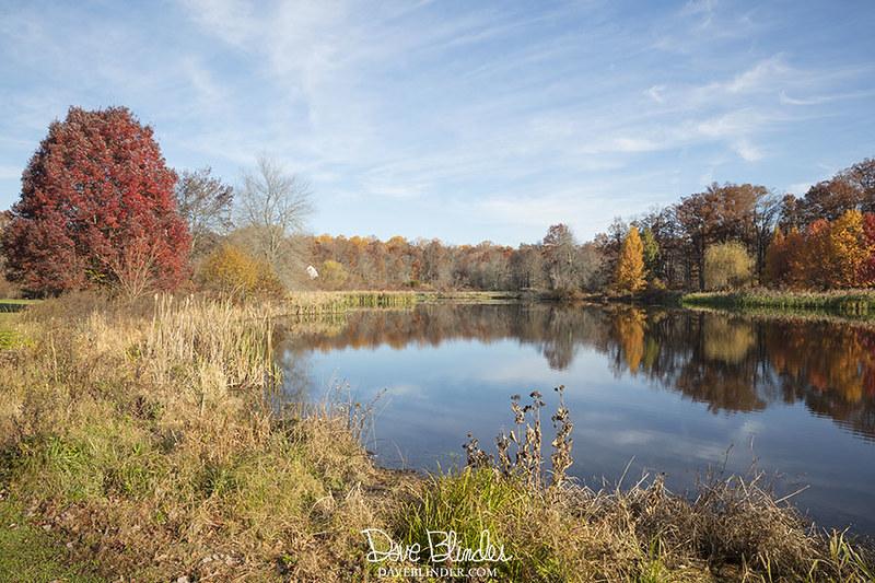 Autumn at Kitchell Pond