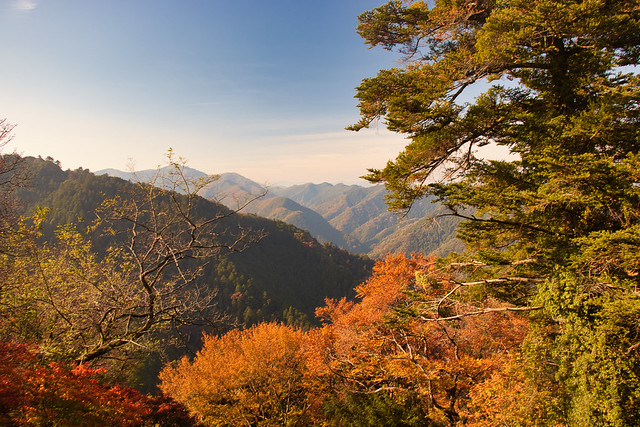 Mt Takao Views
