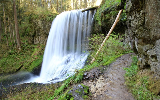 Trail of Ten Falls, Silver Falls State Park, OR